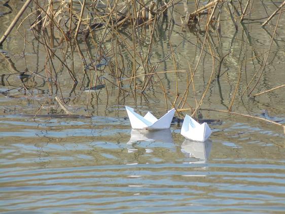 Бумажные кораблики плывут по озеру