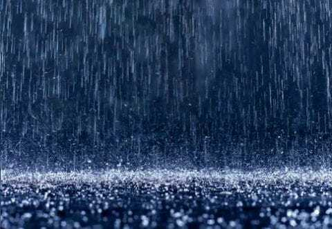 Дождю 2
